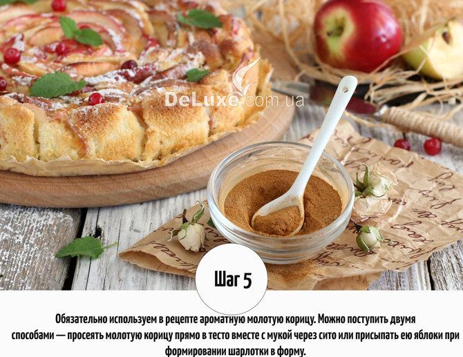 Шарлотка с яблоком пошаговый рецепт с