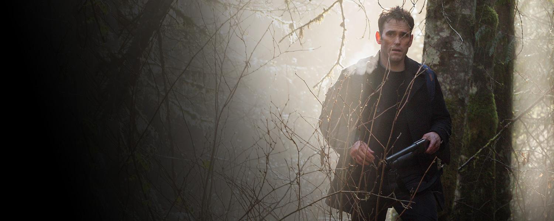 Что не так с сериалом «Сосны»: вопросы и нестыковки