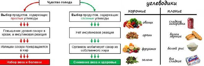 Медленные углеводы и белок