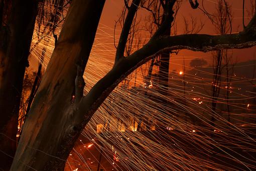 Припожарах вРостовской области 46человек пострадали иодин погиб