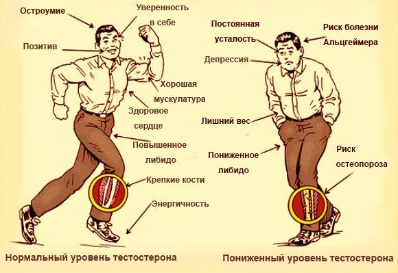 seksualnost-zhenshin-s-povishennim-testosteronom