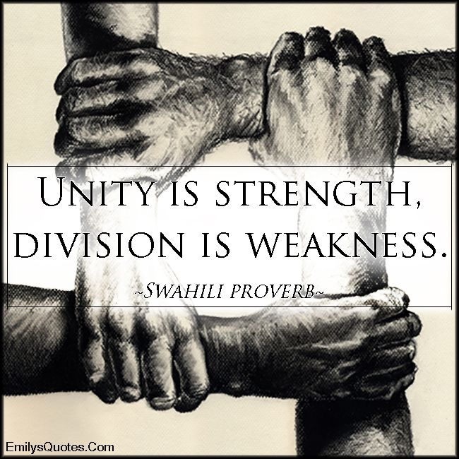 Essay about unity is strength
