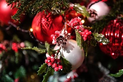 c777af2a2c2e4b08c537017fe8c587e0 - Оценена стоимость покупки иукрашения новогодней елки