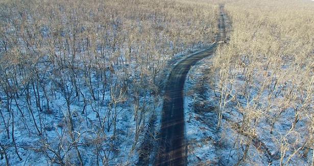 Сломанные деревья иупавшие столбы: кадры последствий разгула стихии наострове Русский