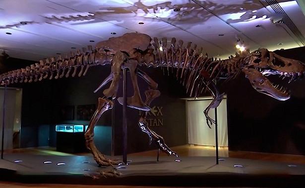 Почти 200костей за32миллиона: нааукционе продан самый известный скелет тиранозавра