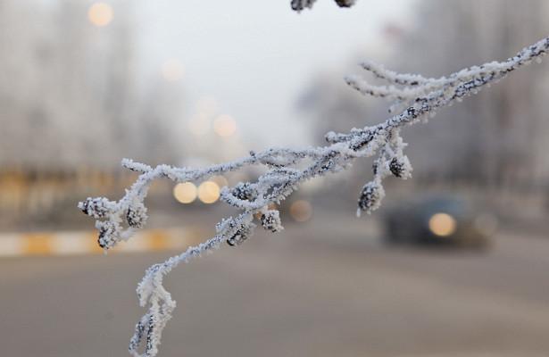 Жителей Московской области предупредили обусилении мороза