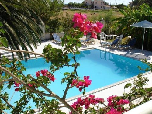 Где дешевле квартира в остров Самос или в италии