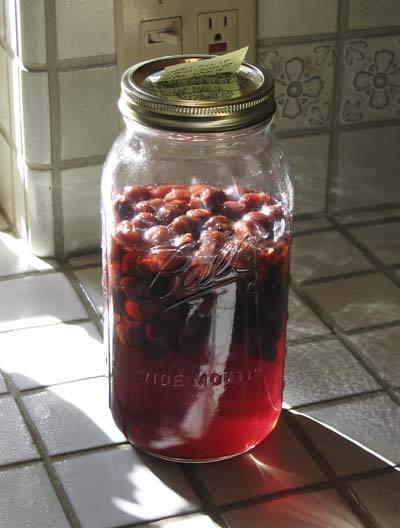 Вино из варенья в домашних условиях быстро рецепт с фото