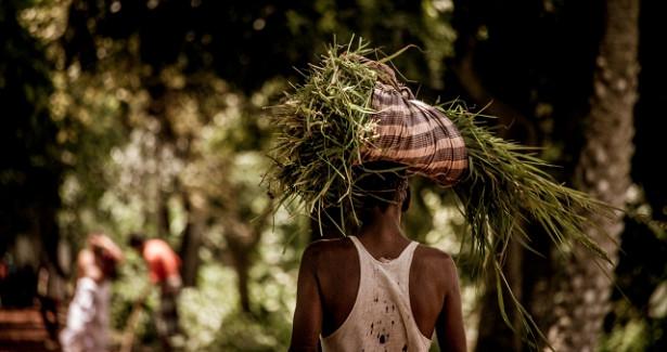 Бангладеш отлавливает климатических преступников изкосмоса