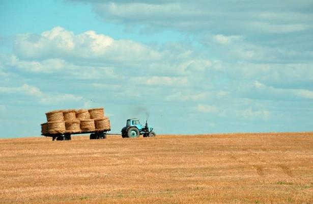 Трактористы возглавляют ТОП-5самых востребованных профессий вАПК