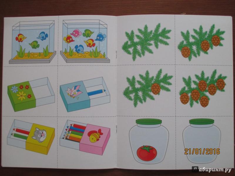 вязание схема описание кактуса