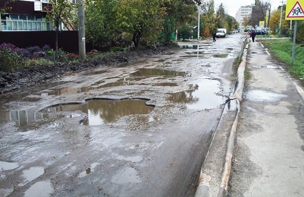 Активисты: ПодВоронежем воспитанники школы идетсада вынуждены пользоваться опасной дорогой