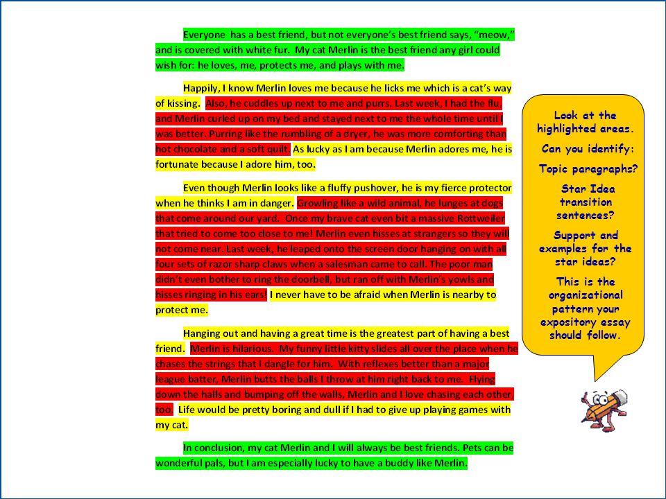 Write my 5 paragraph essay example high school