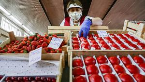 Минсельхоз опроверг предположение овозможном дефиците продуктов