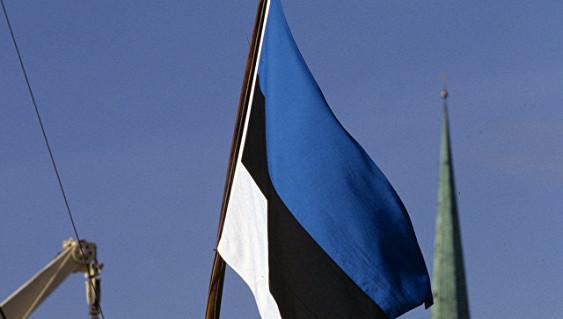 Командующий ВМС Эстонии ушел вотставку после скандала сперевозкой контрабанды