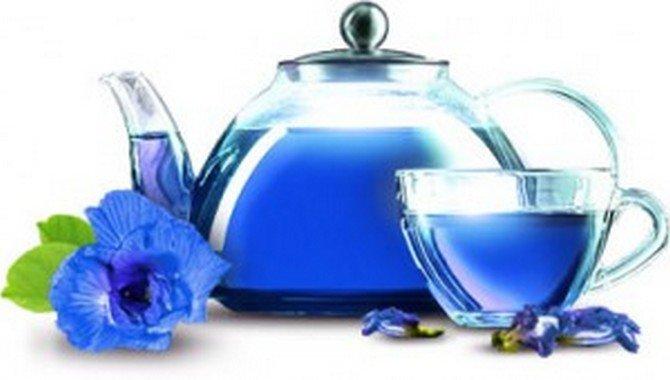 Отзывы пурпурный чай чанг шу противопоказания