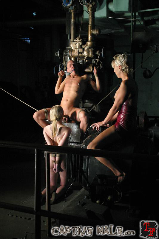 Free bdsm bukkake gang bang videos