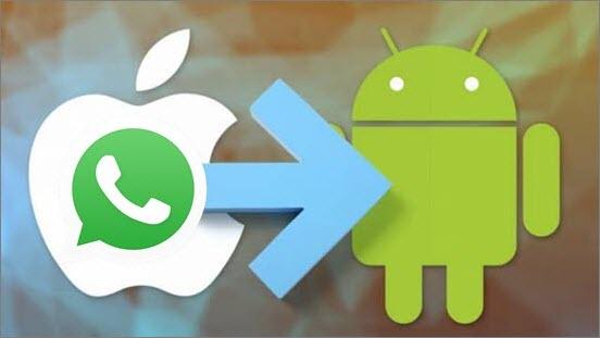 OS WhatsApp Transfer, Backup Restore - Wondershare