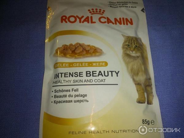 Корм royal canin норма кормления кошек