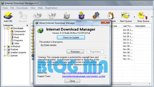 IDM 623 Build 12 100% Working Serial Key+Number