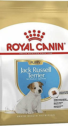Корм royal canin junior jack russell