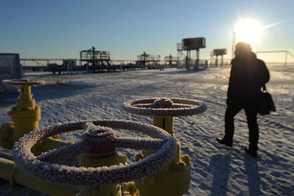 Ученые оценили потенциал месторождений нефти игаза вроссийской Арктике