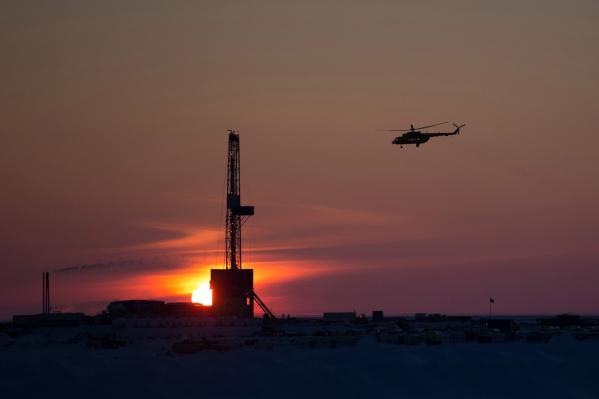 «Роснефть» выпустила новые экологические атласы