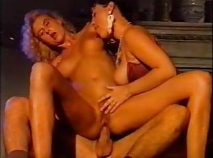 Www shemales orgy galleries com