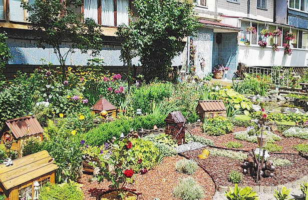 Москвич посадил водворе розы ипожалел