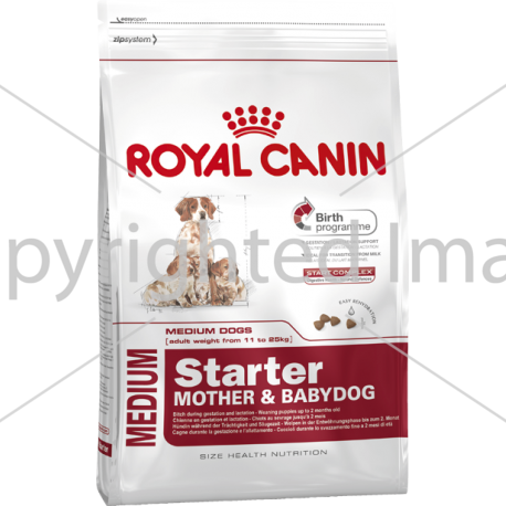 Корм royal canin starter kit