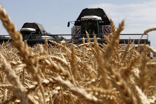 Мишустин заявил, чтоурожай зерна вРоссии позволяет наращивать экспорт