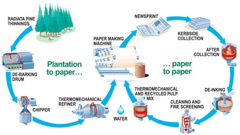Paper Recycling Service - Paper Recycle Company