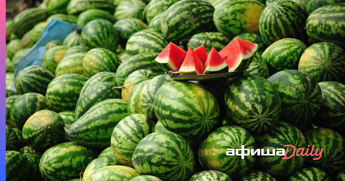 Роспотребнадзор рассказал, как правильно выбирать арбузы и дыни - Афиша Daily