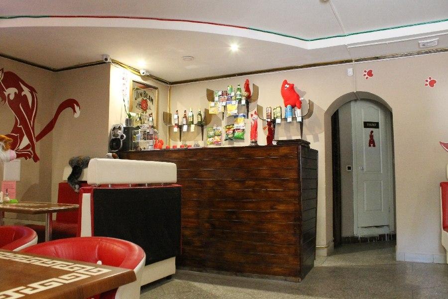 Ресторан Красный кот - фотография 5
