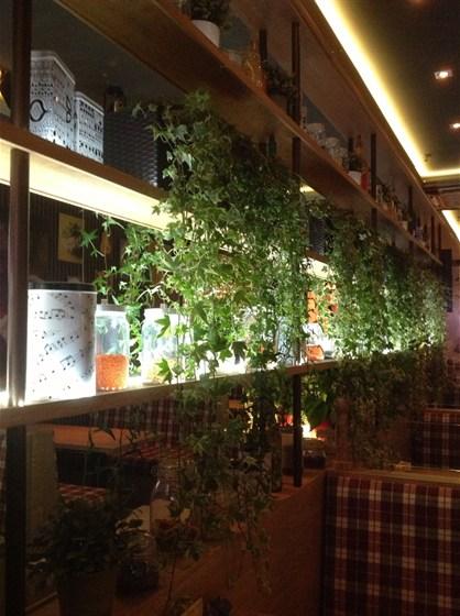 Ресторан La piola - фотография 38