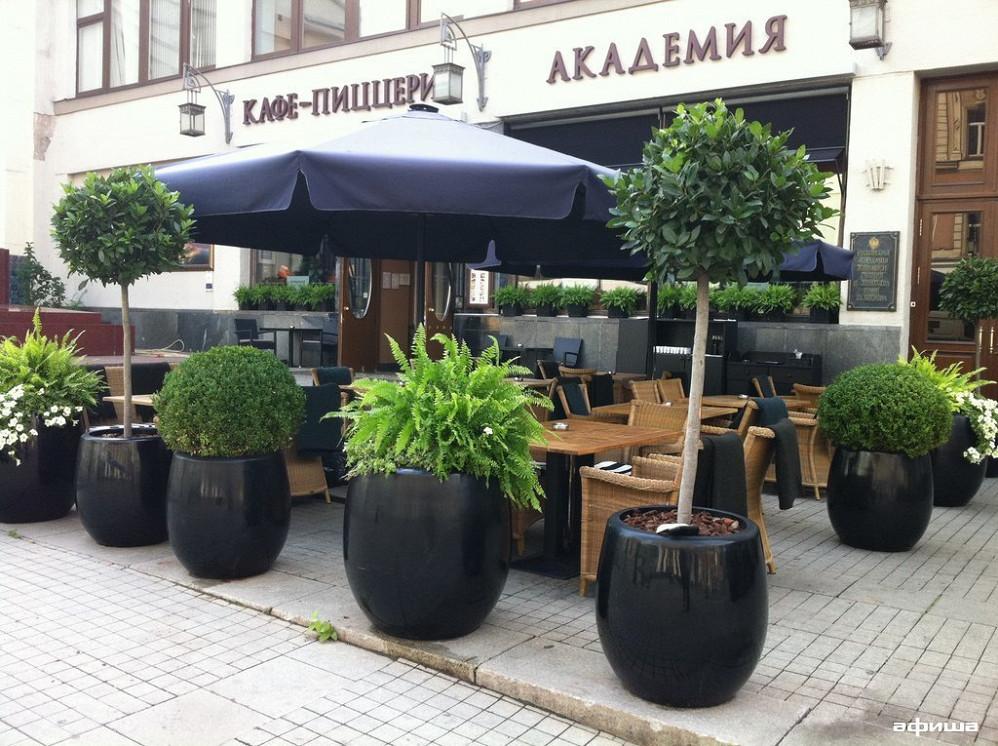 Ресторан Академия - фотография 7