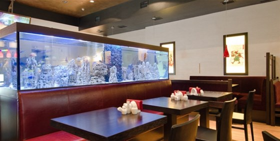 Ресторан Кидзи - фотография 2
