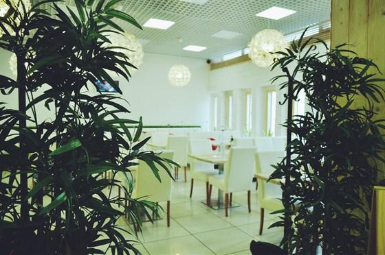 Ресторан Рис - фотография 5