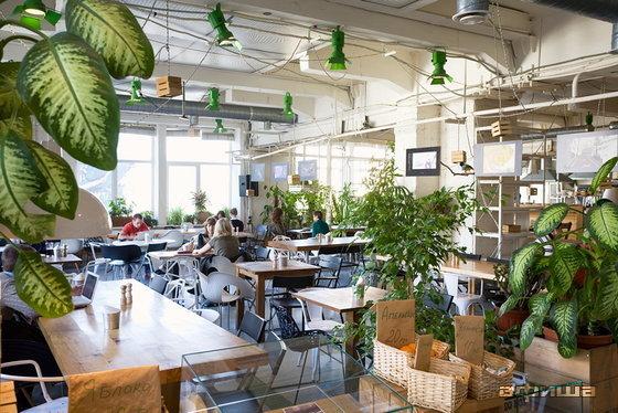 Ресторан Зеленая комната - фотография 7