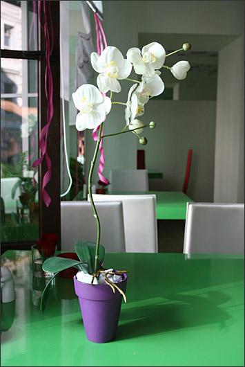 Ресторан Fresh - фотография 16