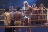 Халк Хоган (Hulk Hogan)