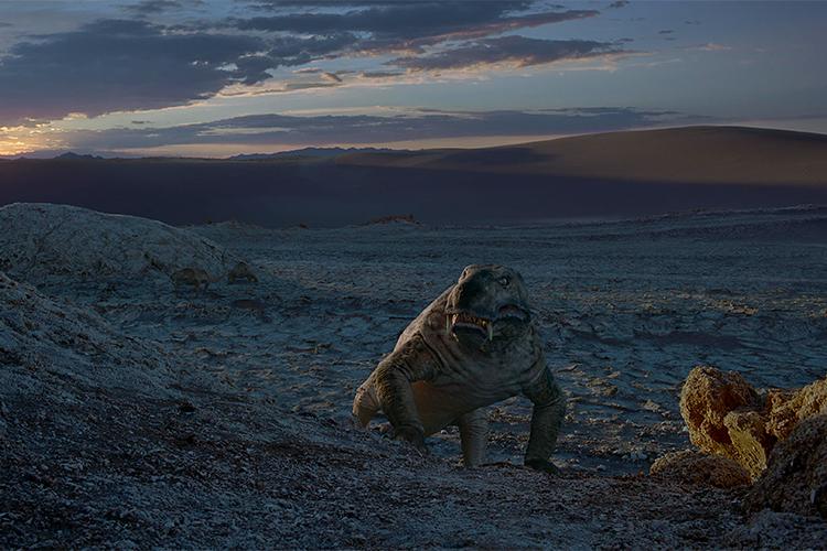 Кинорежиссер Андрей Кончаловский представит наВенецианском кинофестивале собственный фильм «Рай»