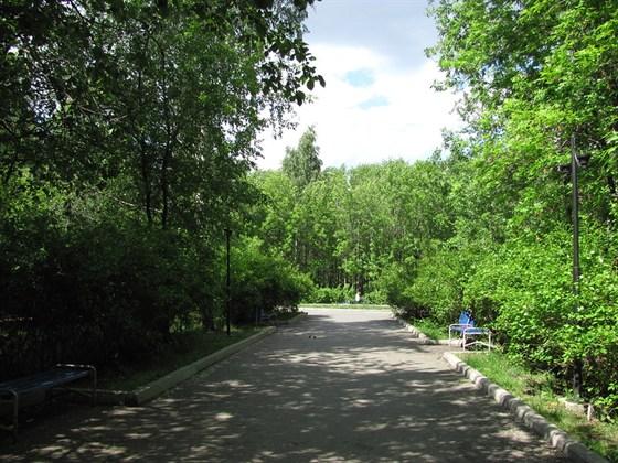 Фото основинский парк в районе Пионерского поселка