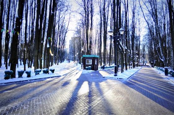 Фото парк Бабушкинский