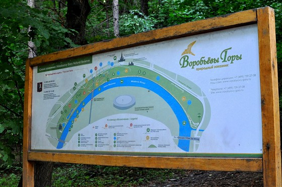 Фото парк Воробьевы горы