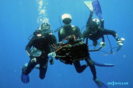 Большое путешествие вглубь океанов 3D смотреть фото