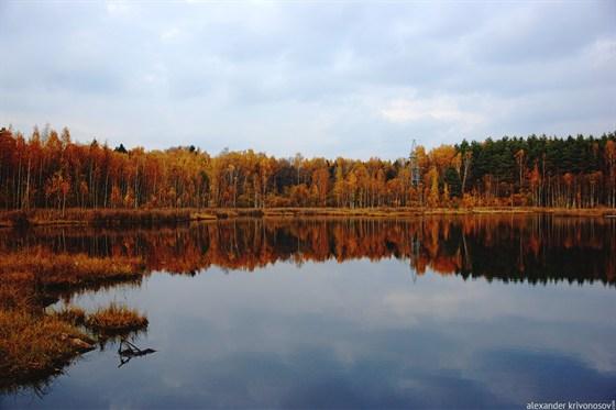 Фото озеро Щепкино Болото