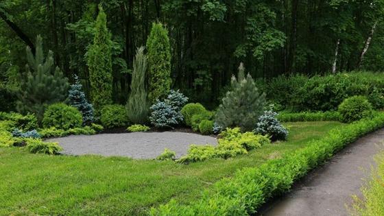 Выставка садов