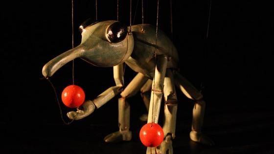Марионеточный цирк насекомых