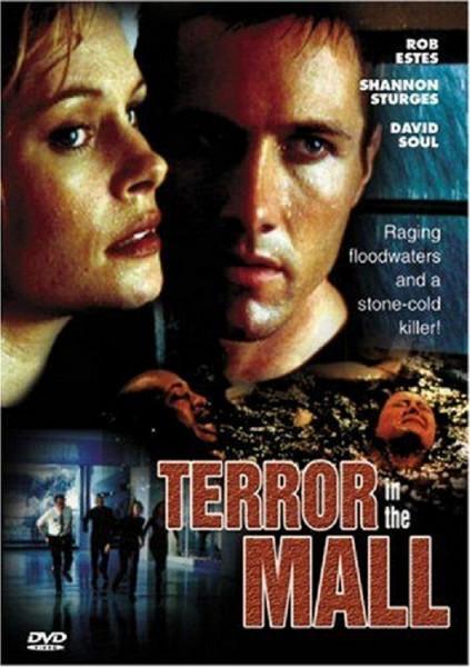 Темный дождь (Terror in the Mall)